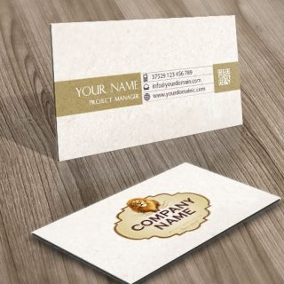 Lion Frame Logo card design