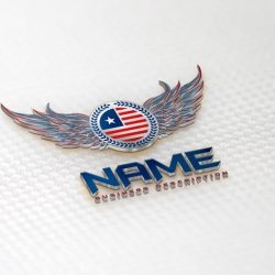 USA America wings Logos for sale online