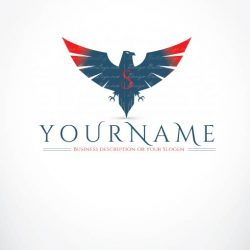 3374-ready-made-eagle-logo-design